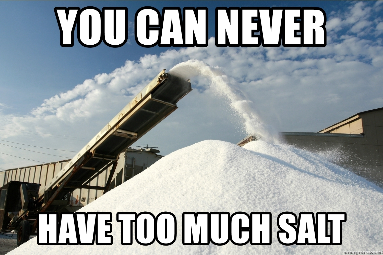 Name:  you-can-never-have-too-much-salt.jpg Views: 78 Size:  744.5 KB
