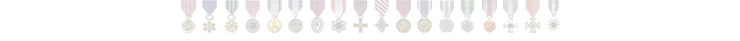 MrNeal89 Medals